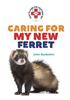 Caring for My New Ferret