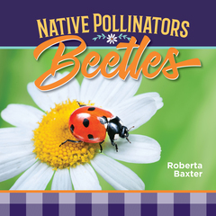 Beetles: Native Pollinators