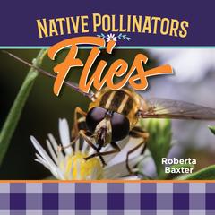 Flies: Native Pollinators