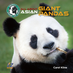 All About Asian Giant Pandas