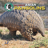 All About Asian Pangolins