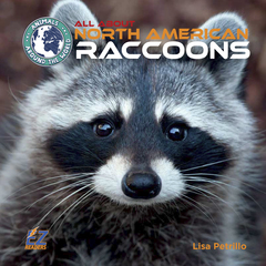 All About North American Raccoons