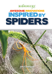Awesome Innovations Inspired by Spiders
