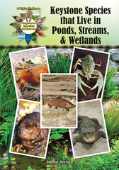 Keystone Species that Live in Ponds, Streams, & Wetlands