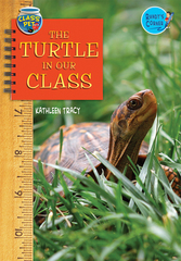 The Turtle in Our Class