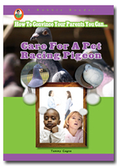 Care for a Pet Racing Pigeon (Dove)