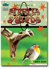 A Project Guide to Birds and Reptiles